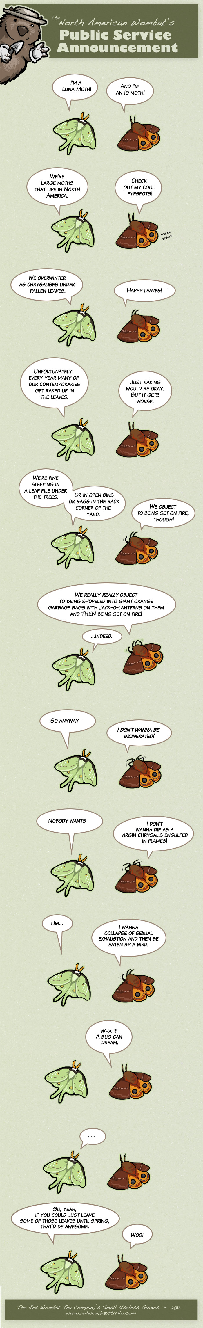 mothpsaweb
