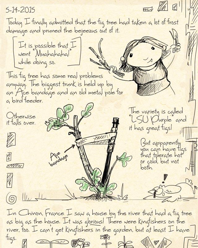 gardenjournal5-14-15