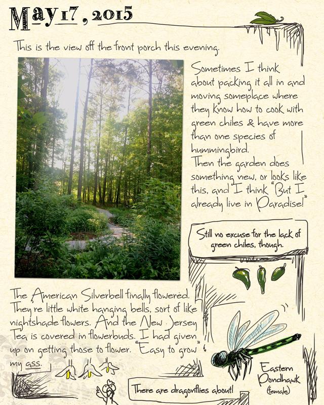 gardenjournal5-17-15