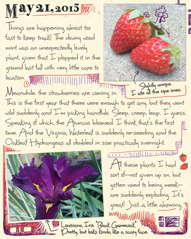 gardenjournal5-21-15