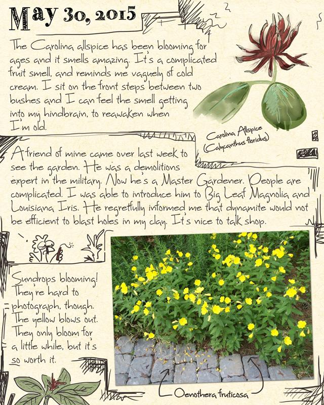 gardenjournal5-30-15