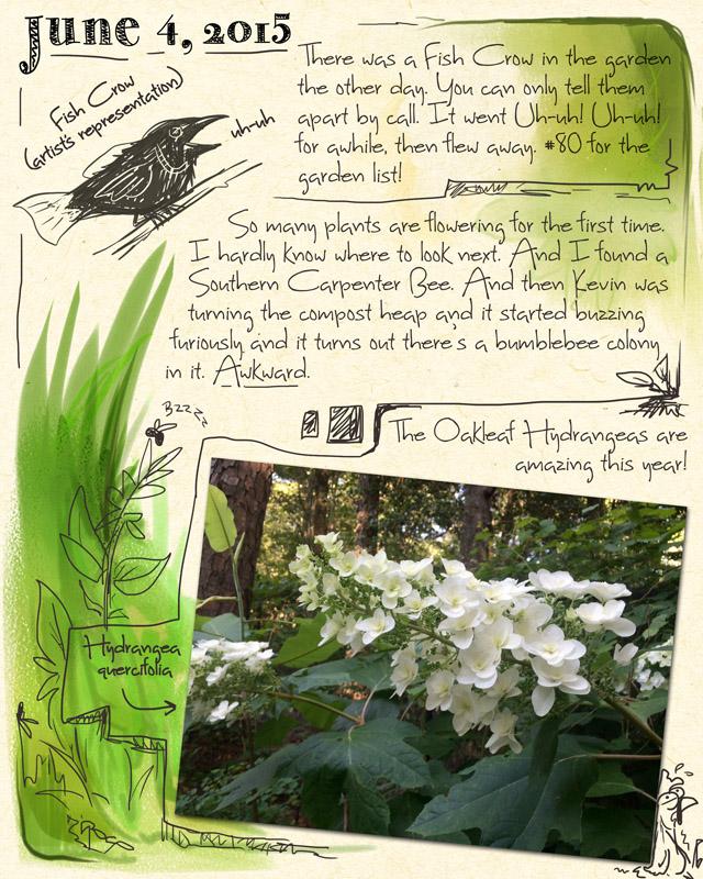 gardenjournal6-04-15