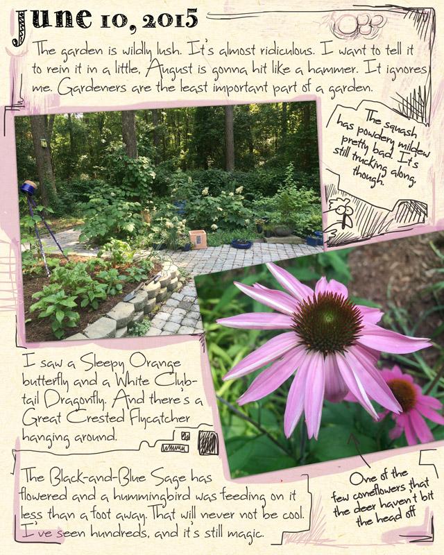 gardenjournal6-10-15