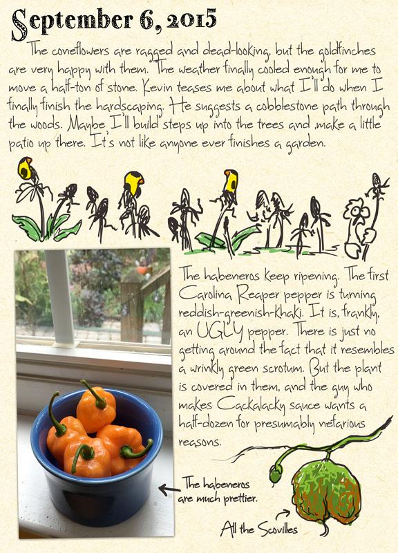 gardenjournal9-06-15